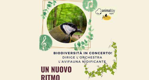 Biodiversità In Concerto